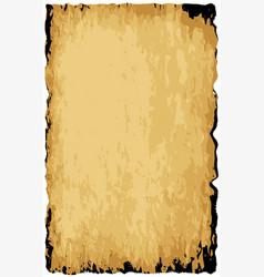 Parchment background vector