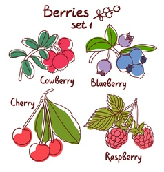 Berries set 1 vector image vector image