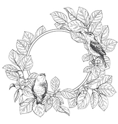 doodle frame bird vector image vector image