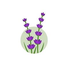 Lavender logo vector image vector image