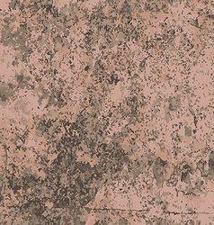 Abstract texture of brown like wall vector image