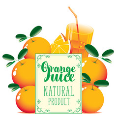 Banner for orange juice with oranges and glass vector