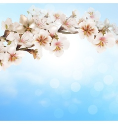 Blooming tree branch with pink flowers on bokeh vector