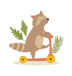 cute raccoon riding on a scooter animal character vector image
