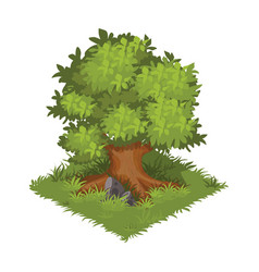 isometric cartoon gigantic green oak tree vector image