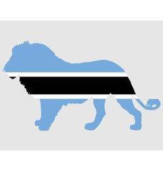 Lion Botswana vector image