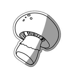 mushroom champignon slice vegetable vector image