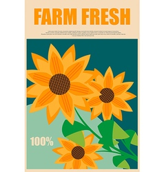 Sunflowers in advertising fresh farm products vector image