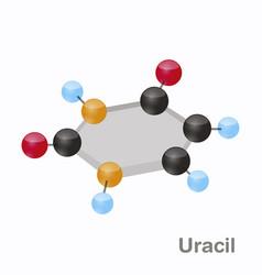 Uracil hexnut u pyrimidine nucleobase molecule vector