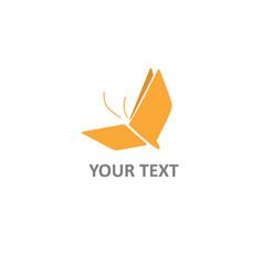book logo creative design butterfly concept vector image
