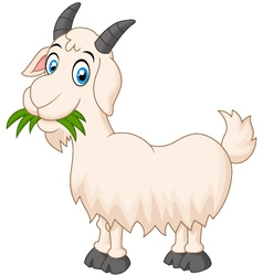 Cartoon goat eating grass vector image