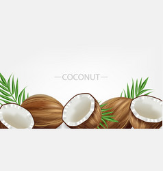 coconuts realistic template tropic exotic vector image