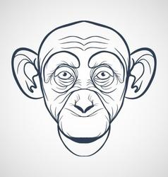 Monkey Drawing vector image