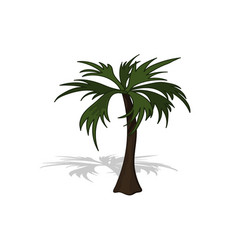 plant in isometric style cartoon tropical tree vector image