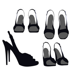 Shoes on white background vector