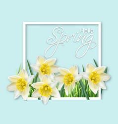 Spring narcissus flowers frame realistic vector