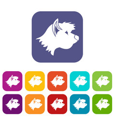 terrier dog icons set vector image
