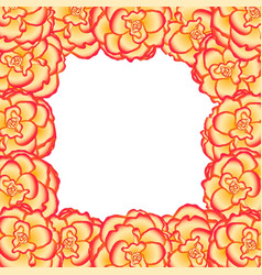 begonia flower picotee sunburst border vector image