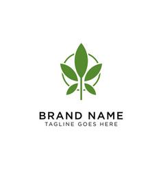 cannabis logo design inspiration vector image
