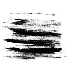 ink brush strokes vector image