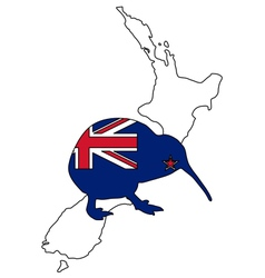 Kiwi of New Zealand vector