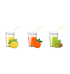 melon orange and kiwifruit juices vector image