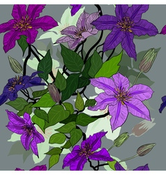 Seamless Floral Background with Clematis vector