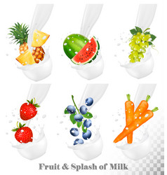 Set different milk splashes with fruit nuts vector