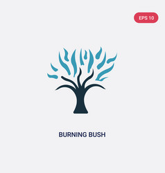 Two color burning bush icon from religion concept vector