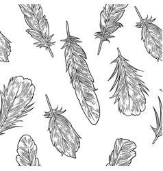 set feathers vintage black engraving vector image vector image