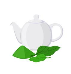 green tea - asian drink teapot matcha tea leaf vector image