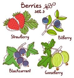 Berries set 3 vector image