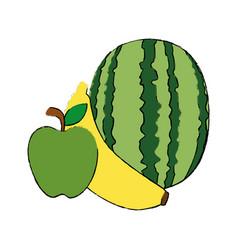 watermelon banana and apple fruits vector image vector image