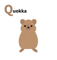 Abc english alphabet letter q qokka cute cartoon vector