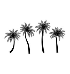 beautifil palm tree silhouette collection se vector image