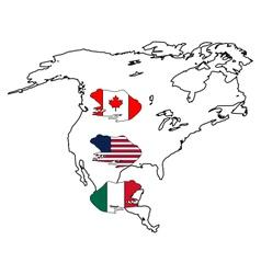 Bullfrog America vector image