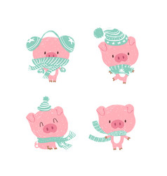 christmas pinky piggy with a hat new year vector image