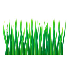 lawn grass icon realistic style vector image