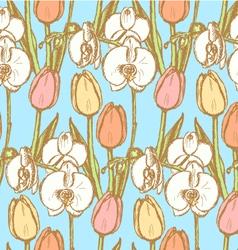 Orchid tulip vector
