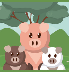 pigs family cute animals cartoons vector image