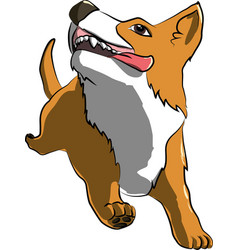 running corgi dog cartoon vector image