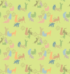 seamless texture with cats vector image