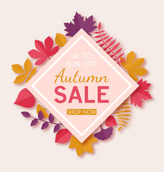 seasonal autumn sale advertising design template vector image