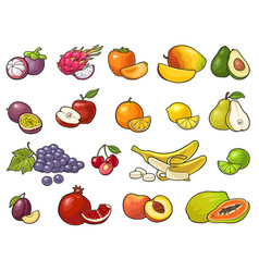 set tropical fruits black vintage vector image