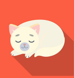 sleeping cat icon in flate style isolated on white vector image