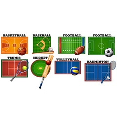 Sport courts and equipment vector image