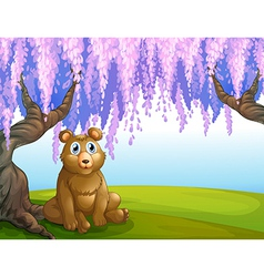 A bear in the park vector image vector image