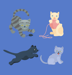 cat breed cute kitten pet portrait fluffy young vector image vector image