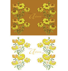 frame autumn sunflowers vector image