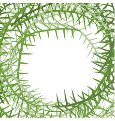 Algae frame leading grass background place for vector